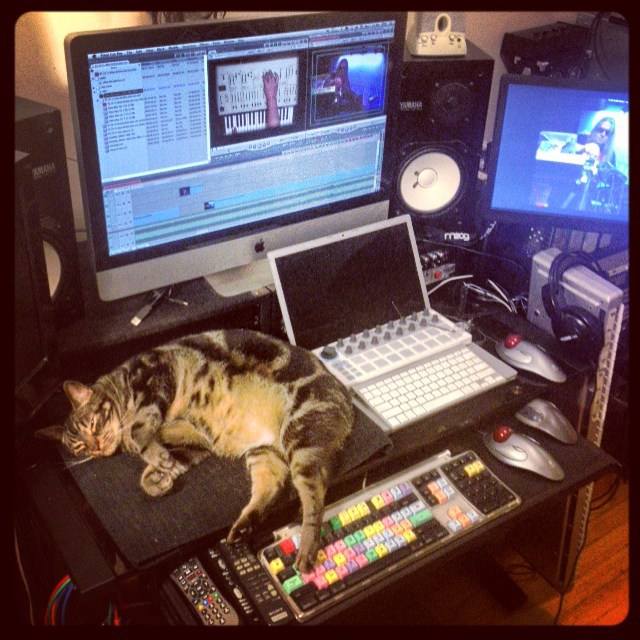Ziggy Cat & Bill T Miller video editing at Headroom