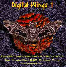 DIGITAL WINGS